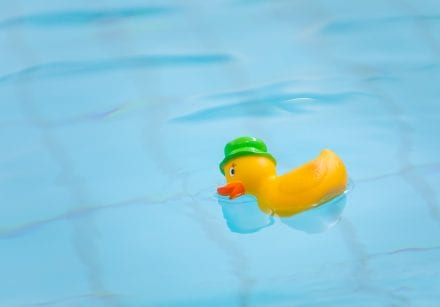 A rubber duck floats in a swimming pool